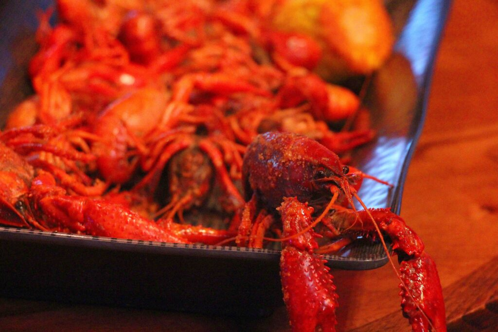crawfish 01